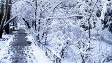 Popada w całym kraju, na wschodzie śnieg. Wilgotne fronty nad Polską
