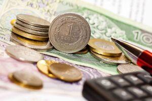 Budżet obywatelski po raz trzeci. 58 mln do podziału, zmienione zasady